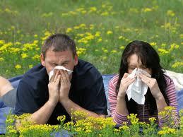 alergicos11