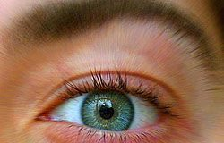 cataratas-ojos1