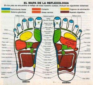 mapa-reflexologia1