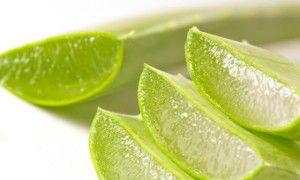 Tratar las hemorroides con remedios naturales