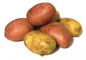 patatas_amflora