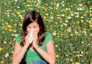 pollenallergi1