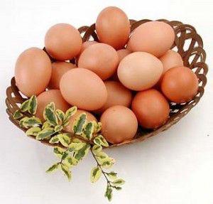 imagen-huevos-300x287