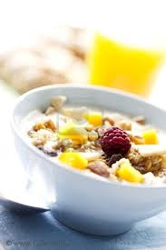 yogurfrutossecos