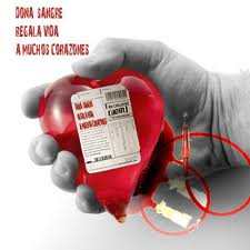 donarsangreespana