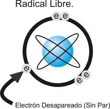 De que se tratan los radicales libres