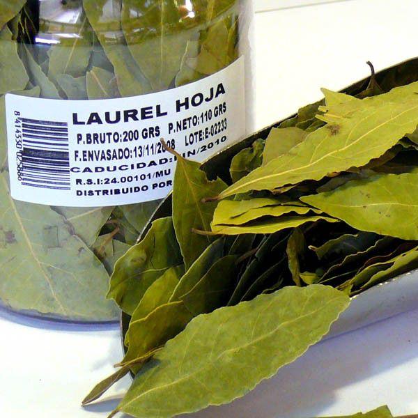 laurel-hojas