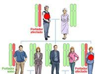 Predisposición genética al cáncer