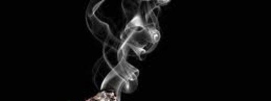 La exposición al humo de cigarrillo y la predisposición a enfermedades