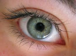 ojos-memoria