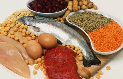 proteinaanimal