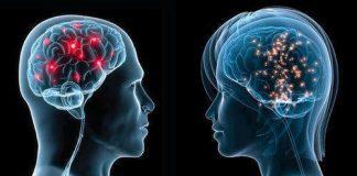 algunos-cerebros-femeninos-podrian-tener-material-genetico-masculino