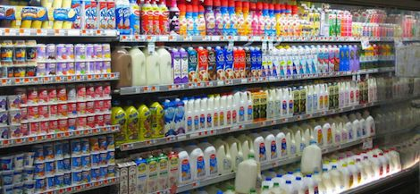 Los-productos-lacteos-no-hacen-adelgazar