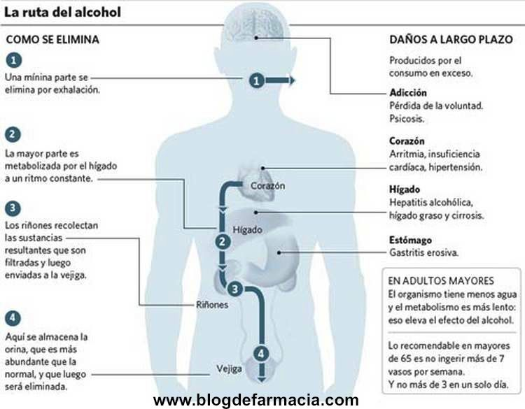 Infografia-Alcohol
