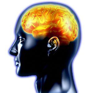 desarrollo-cognitivo