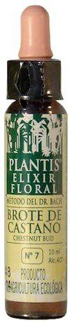 plantis_chestnut_bud_10ml