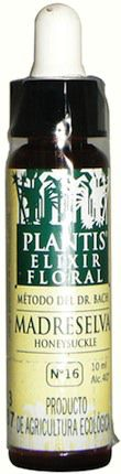 plantis_honeysuckle_10ml