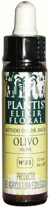 plantis_olive_10ml