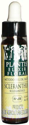 plantis_scleranthus_10ml