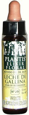 plantis_star_of_bethlehem_10ml
