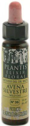 plantis_wild_oat_10ml