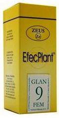 zeus_efecplant_9_menopausia_glandula_femenina