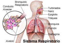 Consejos-para-tratar-fibrosis-pulmonar