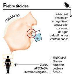 Prevenir-la-fiebre-tifoidea