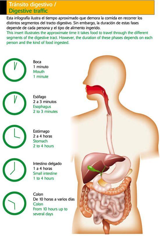 digestionnoche