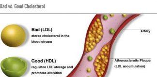 colesterolbeuno