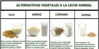 leches-vegetales