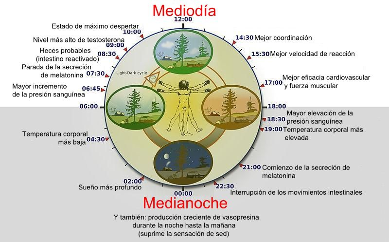 ciclobiologico