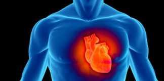 problemas-cardiovasculares-calcio