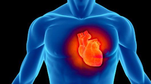 problemas cardiovasculares-calcio