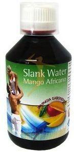 Espadiet Slank Water Mango 250ml