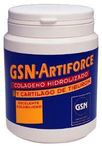 GSN Artiforce Chocolate 300g