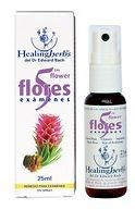 Healing Herbs Examen Spray 25ml