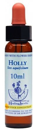Healing Herbs Holly 10ml