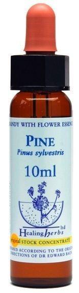 Healing Herbs Pine 10ml