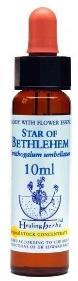 Healing Herbs Star of Bethlehem 10ml