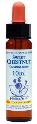 Healing Herbs Sweet Chestnut 10ml