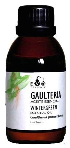 Terpenic EVO Gaulteria Wintergreen Aceite Esencial Bio 100ml