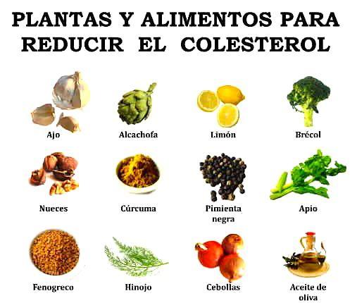 Terapias alternativas para reducir el colesterol alto