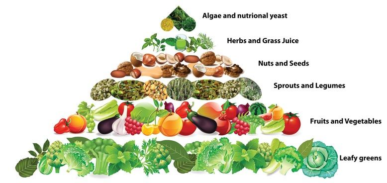 dieta vegetariana completa