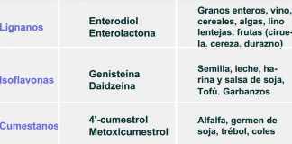 fitoestrogenos-beneficios