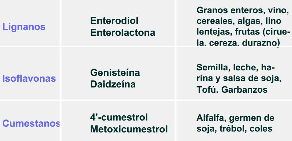 fitoestrogenos beneficios