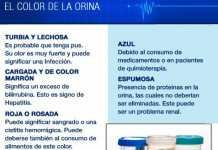 olorycolor-orina