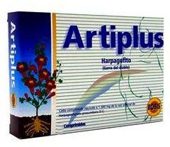 artiplusrobis.jpg