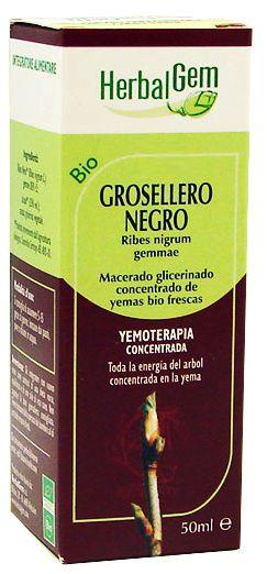 herbalgem_grosellero_negro_macerado.jpg