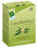 camelliaselect.jpg